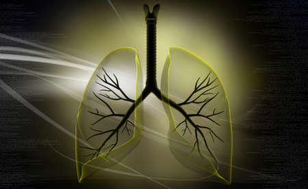 Digital illustration of lungs in coloured background illustration