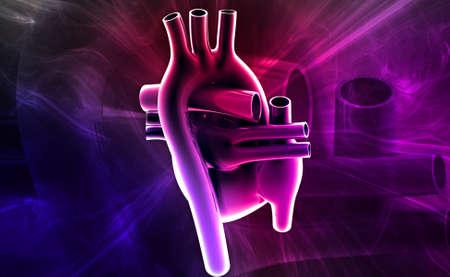 digital illustration of a human heart in white background illustration