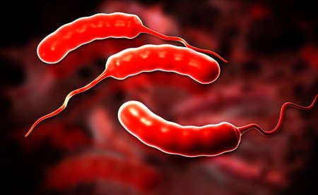 e coli: Digital illustration of E coli Bacteria in color background