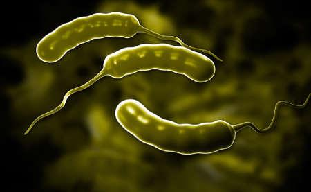 flagellum: Digital illustration of Cholera bacteria in colour background