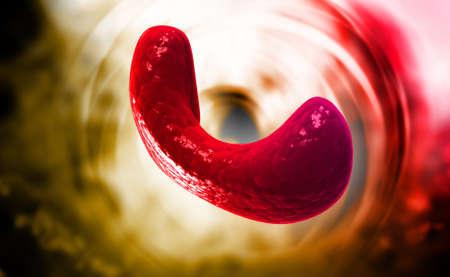 iodine: Endocrine parathyroid gland isolated on colour background