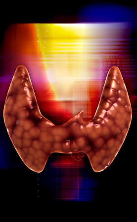 graft: Endocrine parathyroid gland isolated on colour background