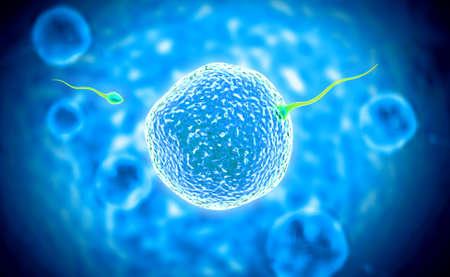 digital illustration of sperm and ovule in colour background Reklamní fotografie