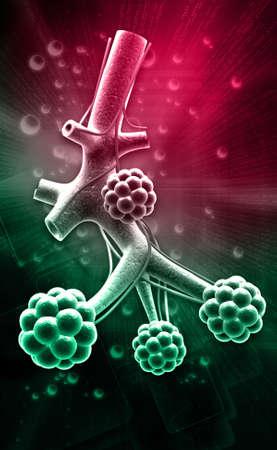 digital illustration of Alveoli in digital background illustration