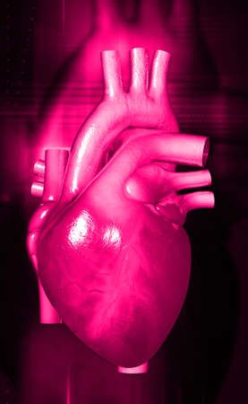 digital illustration of a human heart on digital background