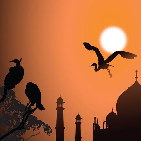 agra: view of Taj Mahal, agra, India, birds, sun