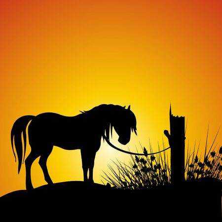 tied: silhouette view of a horse tied to a branch