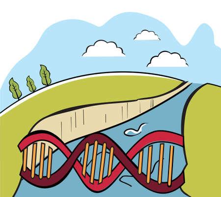 bridging the gap: DNA bridge