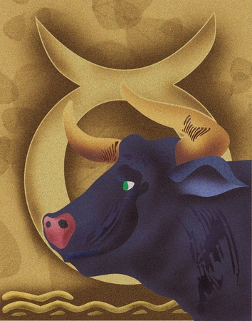 pictorial  representation: Close-up of bull with zodiac sign; Taurus