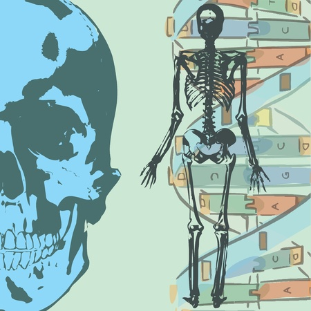 Collage with human skeleton and science elements  photo