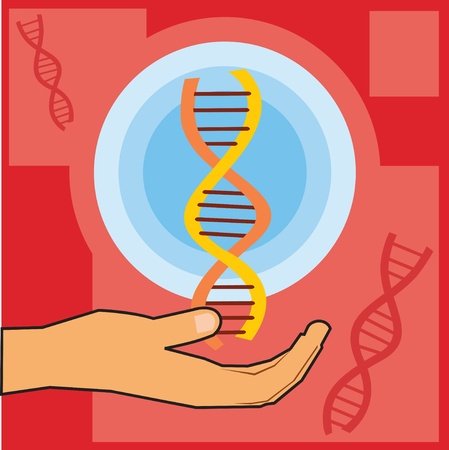 Closeup of a hand holding dna Stock Photo - 9688636