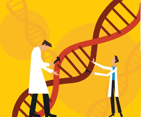 Two scientists fixing dna Stock Photo - 9688663