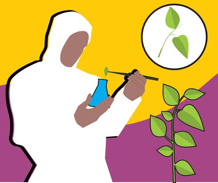Front view of a scientist putting leaf into flask Stock Photo - 9688691