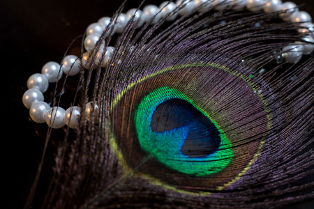 Pearls and Peafowl Feather
