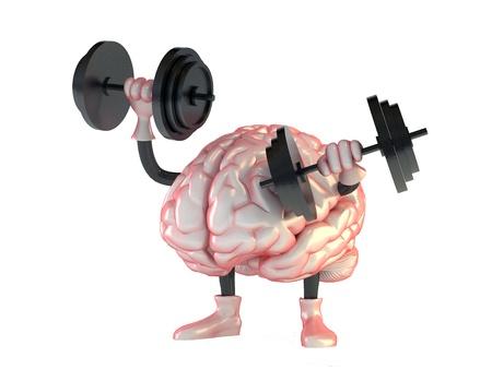 brain Stock Photo - 16774162