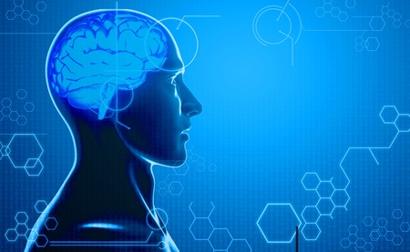 computer background with human brain photo