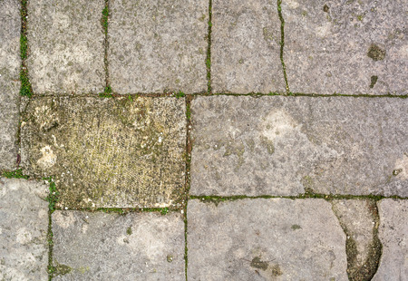 stone floor: cobblestone with grass texture , stone pathway with grass  background Stock Photo