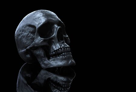 Skull isolated in background 3d render