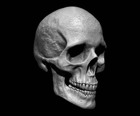 Cráneo aislado en el fondo 3d render Foto de archivo