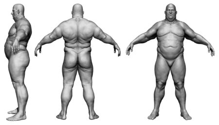The human body in overweight - Body fat man - isolated model - 3d render Archivio Fotografico - 134751628