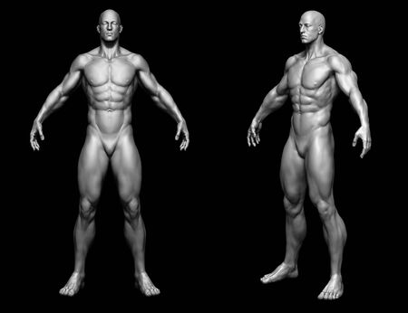 The body - man body - isolated model - 3d render