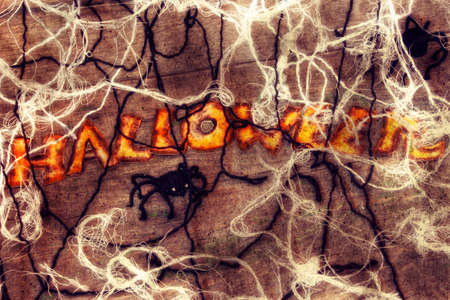 home made halloween spiders and web  Stock Photo