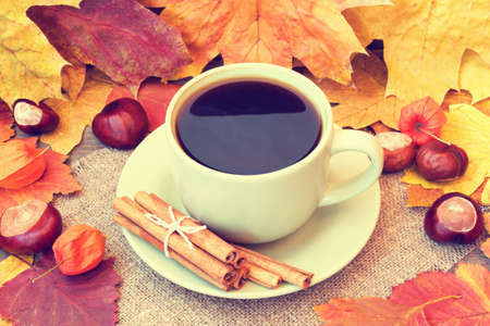 cozy cup of coffee and autumn leaves photo