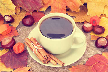 cup of coffee and autumn leaves  photo