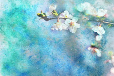 apricot tree: beautiful artwork with blooming apricot tree flowers and splashes of watercolor