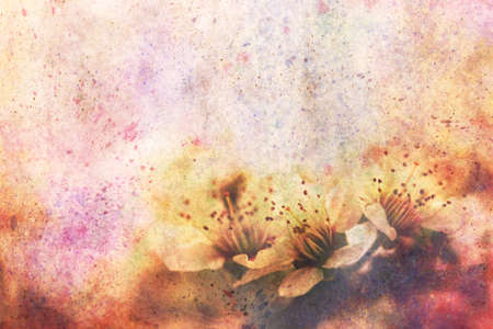 apricot tree: artwork with fragile beautiful apricot tree flowers and watercolor strokes