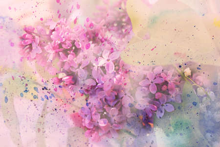 oil painting: Watercolor branch of lilac  Stock Photo