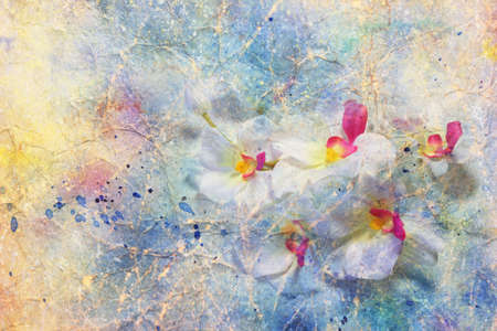 Flowers on a blue messy grunge background  photo
