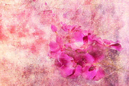 Purple orchids and watercolor splashes  photo