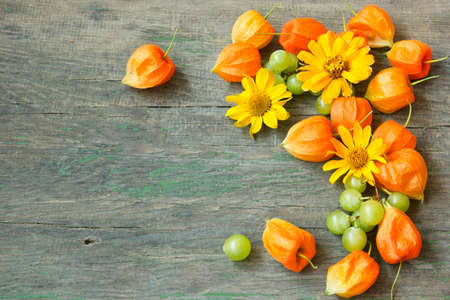Autumn background with cape gooseberries, grapes and flowers  photo