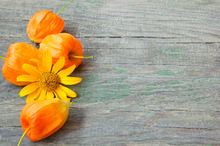cape gooseberries and flower on a wooden background  photo