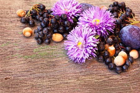 Autumn wooden background with flowers, ash berries and nuts  photo