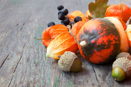 autumn harvest close up  pumpkins, nuts, cape gooseberries  photo