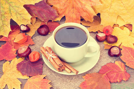 warming yummy coffee and autumnal leaves photo
