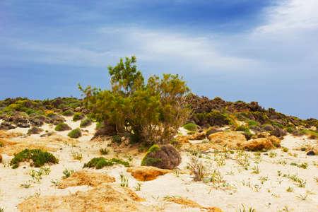 deserted: beautiful deserted beach, Crete, Greece
