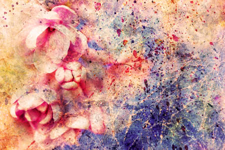 gentle pale pink lilac flowers and watercolor splashes Stock Photo