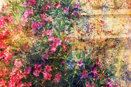 pink flowers and watercolor spatter Stock Photo