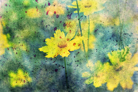 yellow flowers: yellow flowers and watercolor splashes