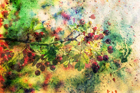 scenics: artwork with hawthorn branch and watercolor brushstrokes Stock Photo
