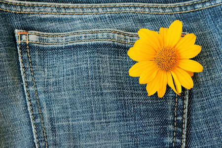 material flower: denim material with flower