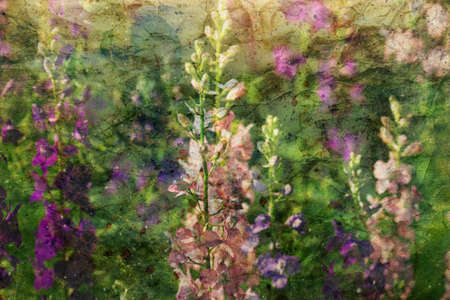 blooming: blooming delphinium flowers and watercolor spatter