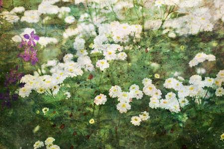 artwork: artwork with beautiful chamomiles
