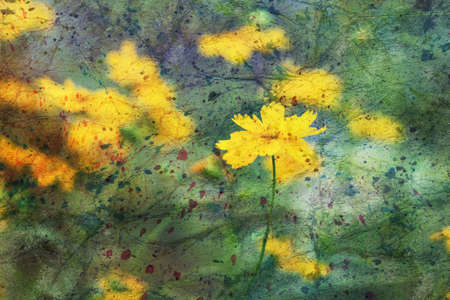 artwork with yellow coreopsis flowers
