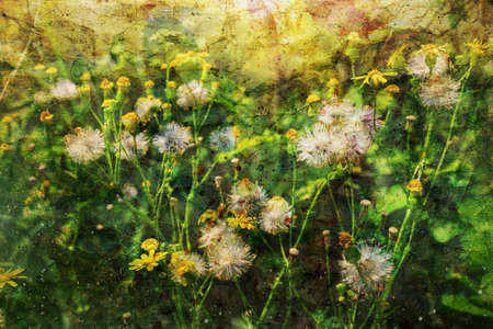 artwork with beautiful summer flowers and watercolor splashes