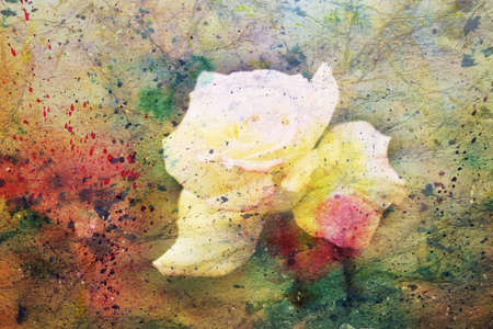 artwork with cute white rose and watercolor splashes