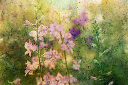 pink delphinium flowers and watercolor spatter Standard-Bild